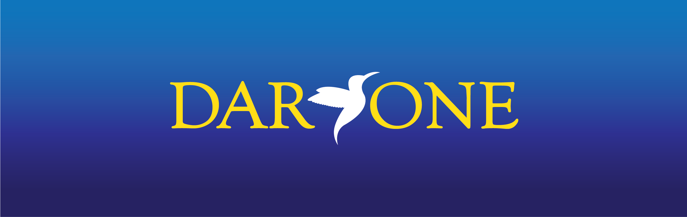 DAR-ONE Professional Coaching